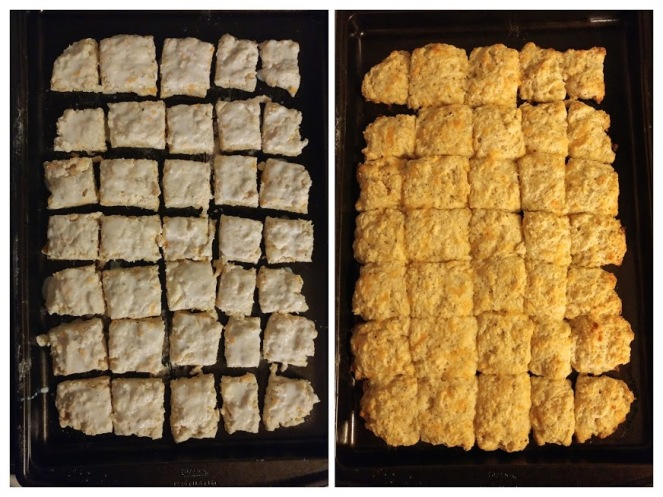 Biscuit side by side.jpg